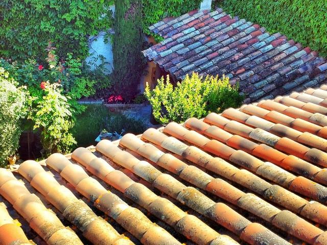 Teulat casa i teulat porxo, jordi alsina